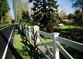 Tan crossbuck fence