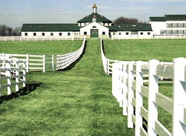 Vinyl Fencing For Horses white vinyl + pvc horse fence   fencing from vinyl fence wholesaler