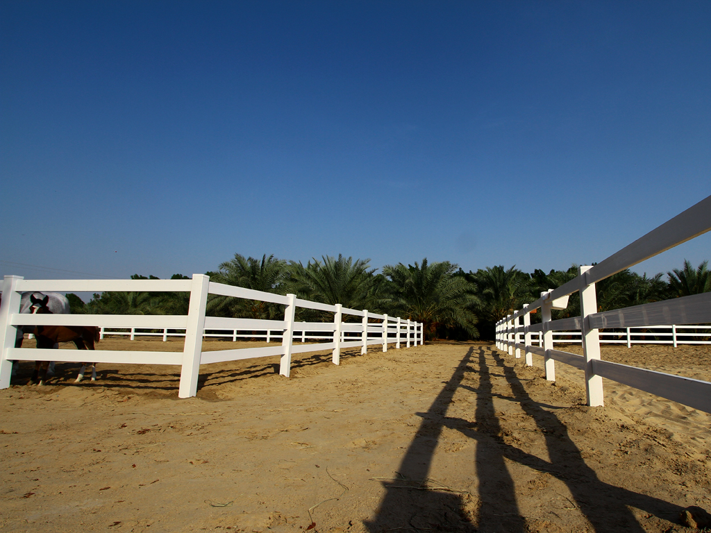 White Vinyl Pvc Horse Fence Fencing From Vinyl Fence