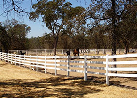 white PVC horse fence