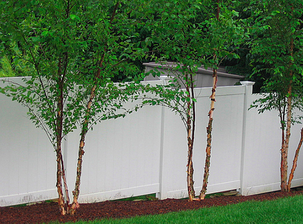 Example of a stepped vinyl fence