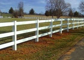 gray horse fence