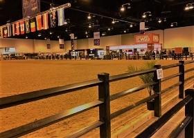 black horse fence