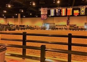 black vinyl horse fence