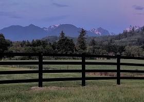 black vinylhorse fence